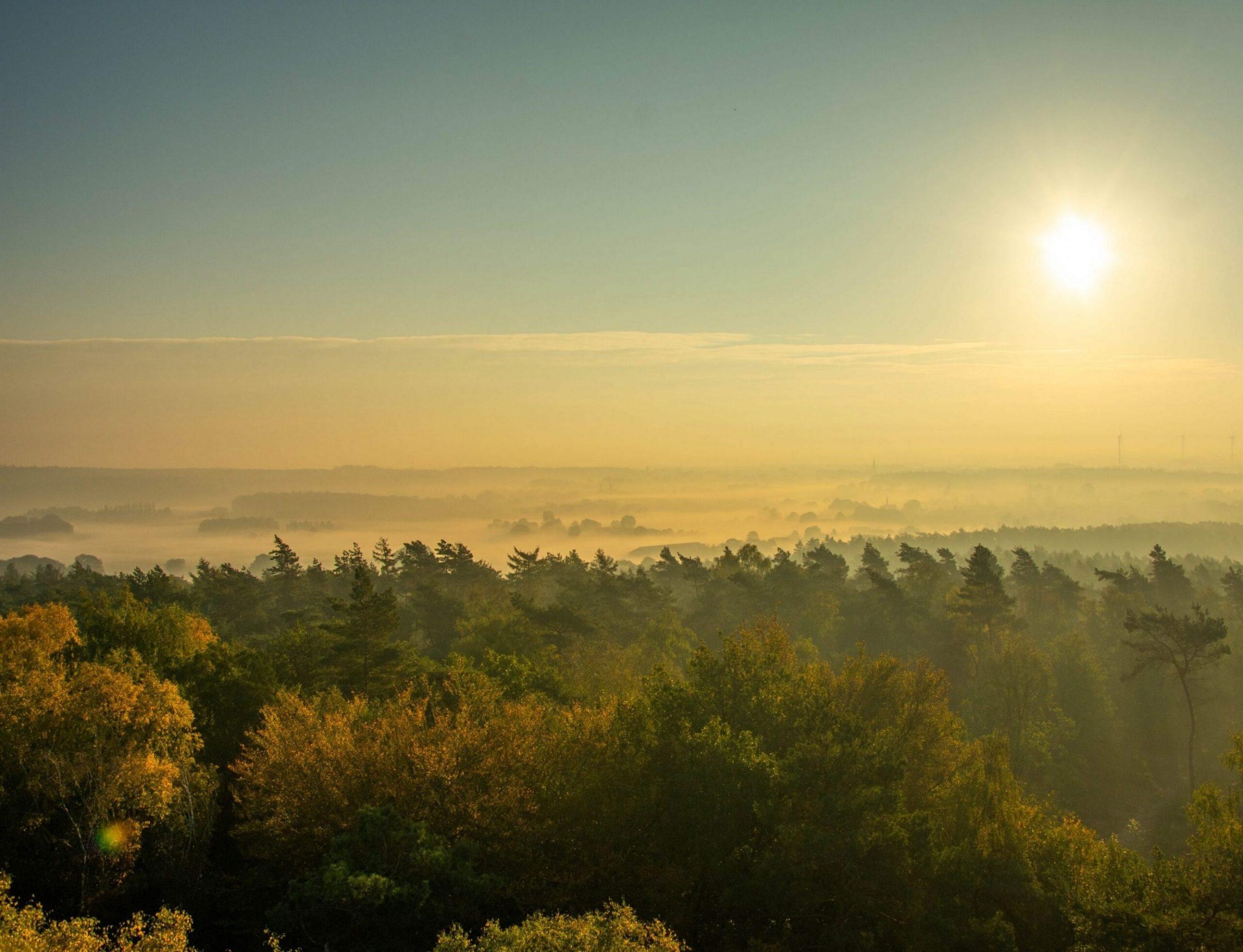 Uitzicht vanaf de Hulzenberg